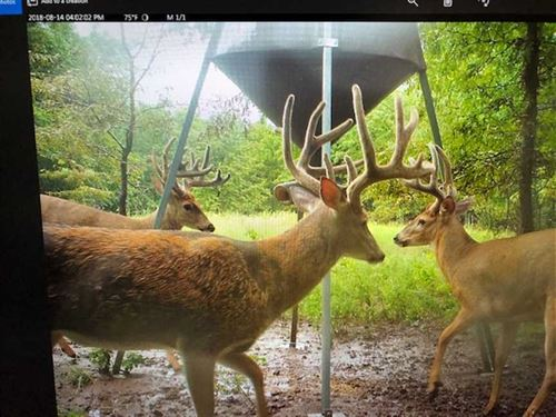 155 Acres of Tillable, Creek : Spivey : Kingman County : Kansas