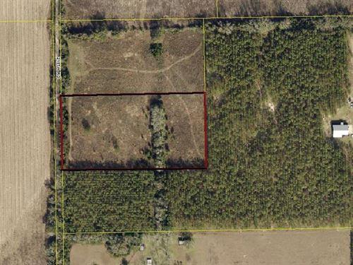 5 Acres In Live Oak, Florida : Live Oak : Suwannee County : Florida