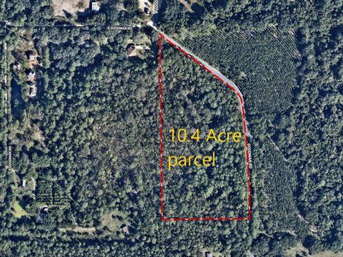 South Goodman Road 10.4 Acres : Kissimmee : Osceola County : Florida