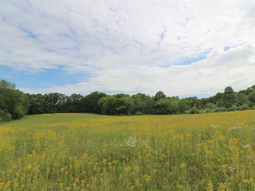 Tr 119, 10 Acres : Kimbolton : Coshocton County : Ohio