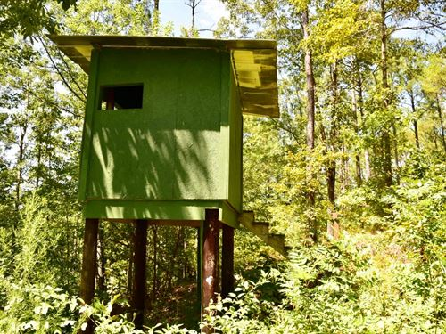 Atkins Tract : Weogufka : Coosa County : Alabama
