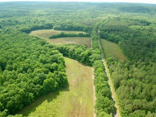 Enzor Property : Luverne : Crenshaw County : Alabama