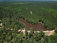 Bashi Tract : Morvin : Marengo County : Alabama