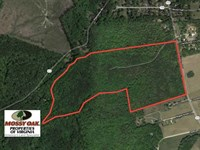 91 Acres of Undeveloped Residentia : Gloucester : Gloucester County : Virginia