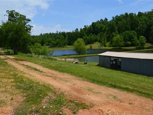 17 Acres With Spring Fed Stocked : Silva : Wayne County : Missouri