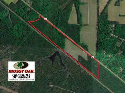 40 Acres of Farm And Hunting Land : Disputanta : Prince George County : Virginia