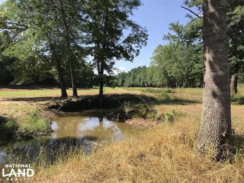 Wahalak Creek Custom Cabin With Pon : De Kalb : Kemper County : Mississippi