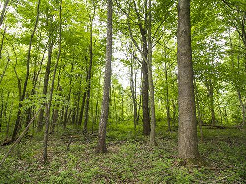 S, Parrish Rd, 24 Acres : Conneaut : Ashtabula County : Ohio