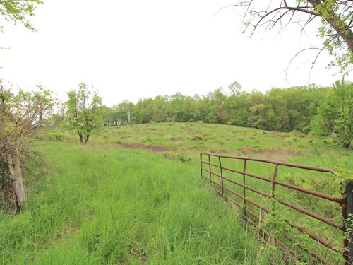 Boyscout Rd, 9 Acres : Dover : Tuscarawas County : Ohio