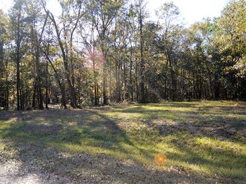Beautiful Property On Private Road : Live Oak : Suwannee County : Florida