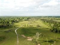 Providence Tract : Gallion : Marengo County : Alabama