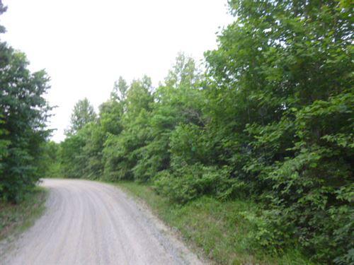 Calling All Hunters : Cullen : Prince Edward County : Virginia