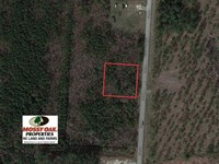 .49 Acres of Residential Land : Rocky Mount : Edgecombe County : North Carolina