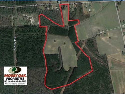 80 Acres of Farm And Timber Land : Ayden : Pitt County : North Carolina