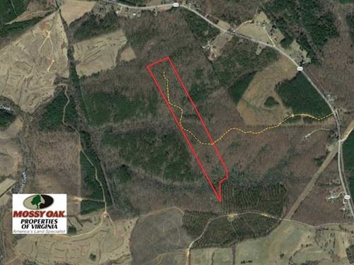 Reduced, 31 Acres of Hunting Land : Appomattox : Virginia