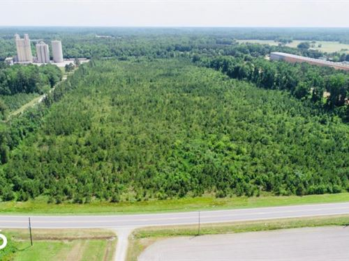 US 64 Business Commercial/Timber PA : Nashville : Nash County : North Carolina