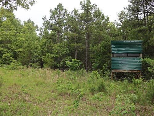 Land For Sale In Oxford, Arkansas : Oxford : Izard County : Arkansas