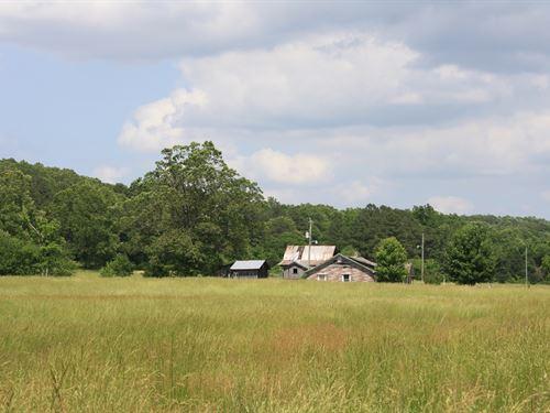 Missouri Hunting Recreational Land : Lodi : Wayne County : Missouri