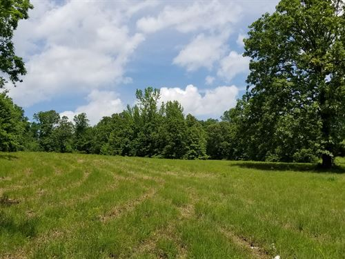 8.12 Acres Close to Town, Building : Linden : Perry County : Tennessee