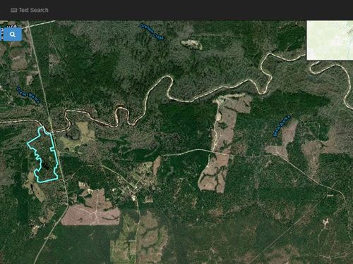 Hunting And Timber On Rolling Hills : Rockland : Tyler County : Texas
