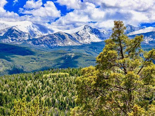 Hunting Hideout : Anaconda : Deer Lodge County : Montana