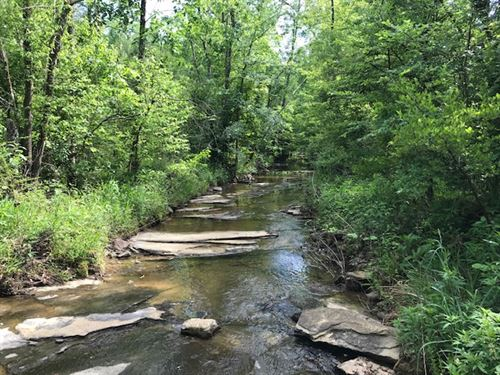 878 Ac, Creeks / Ponds, Development : Odenville : Saint Clair County : Alabama