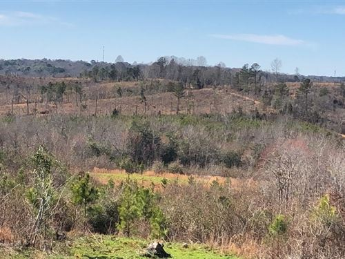 60 Acres, Perry County : Marion : Perry County : Alabama