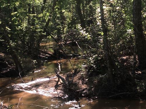 415 Acres Beach Creek Tract : Valley Grande : Dallas County : Alabama