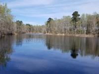 Big Buck Retreat : Midville : Burke County : Georgia