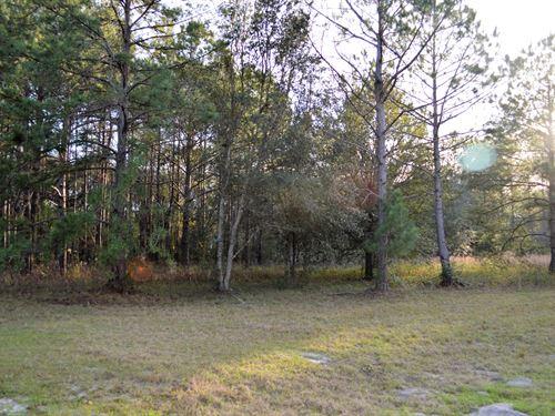 Beautiful Subdivision : Live Oak : Suwannee County : Florida