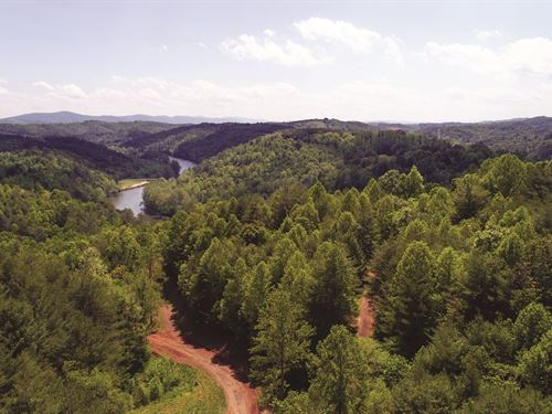 Perfect River Lots To Be Auctioned : Galax : Grayson County : Virginia