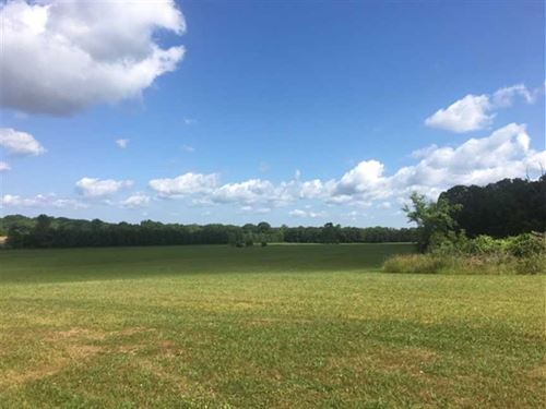 76 Acres of Open Pasture/Hay Land : Okolona : Chickasaw County : Mississippi