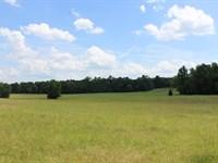 Riverfront Pasture Land : Milledgeville : Baldwin County : Georgia