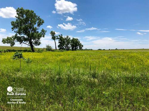 79.18 Acres Farmland, Crp & Pasture : Gypsum : Saline County : Kansas