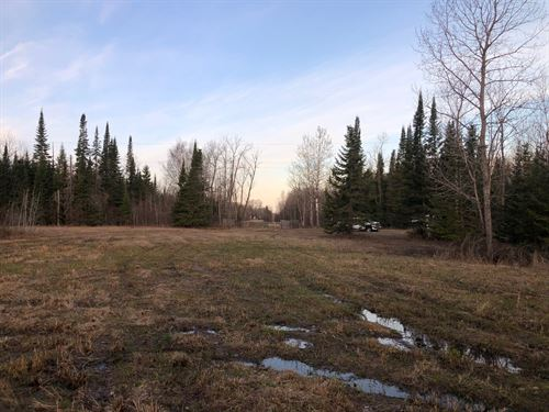 Blackduck MN Hunting Land Shooks : Blackduck : Beltrami County : Minnesota