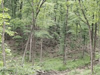 Burnett Mills Road : Oak Hill : Hardeman County : Tennessee