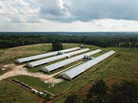 Thomas Poultry, 101+/- Acre Cattle : Ranburne : Cleburne County : Alabama