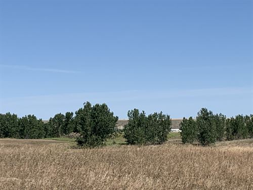 Investment Opportunity Abounds : Havre : Hill County : Montana