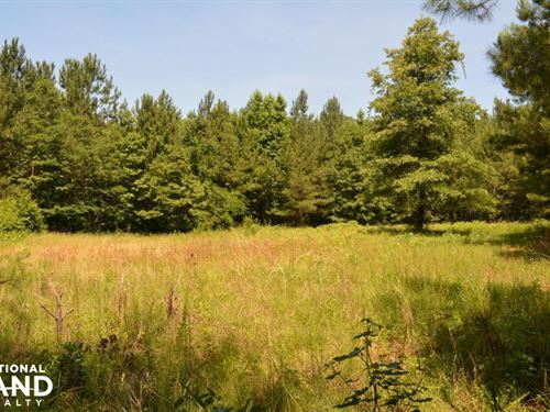 Talladega National Forest Hunting : Marion : Perry County : Alabama