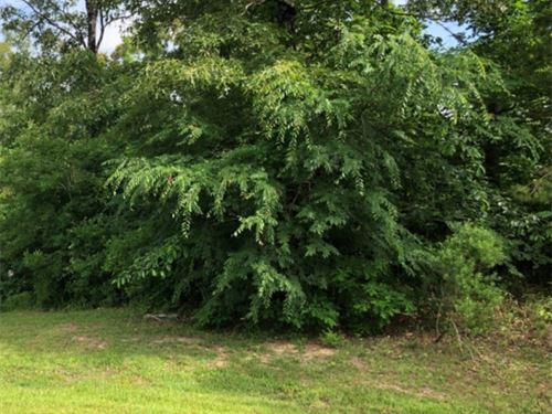 .83 Acre Lot In Hinds County In Mal : Raymond : Hinds County : Mississippi