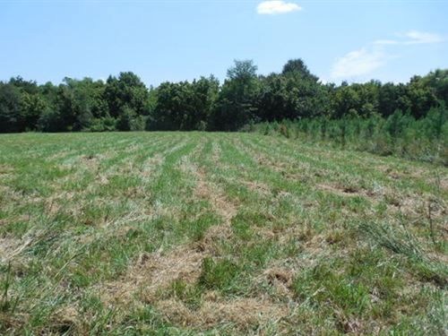 300 Acres In Hinds County In Raymon : Raymond : Hinds County : Mississippi