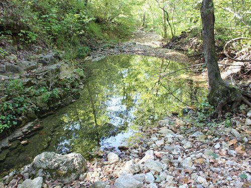 170 Acres Wooded Land Live Creek : Camdenton : Camden County : Missouri