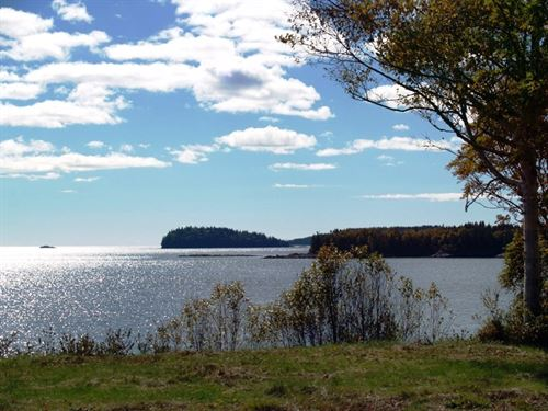 Coastal Property Machiasport, ME : Machiasport : Washington County : Maine