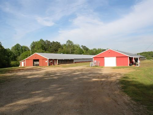 Cleburne County Breeder Farm : Ranburne : Cleburne County : Alabama