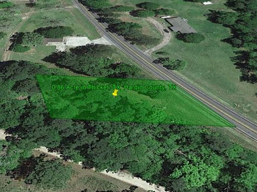 Pristine Views Everywhere 0.86 Ac : Thicket : Hardin County : Texas