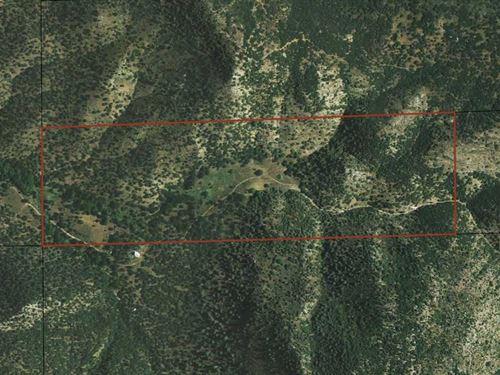 Miller Springs 120 Acres East : Twin Oaks : Kern County : California