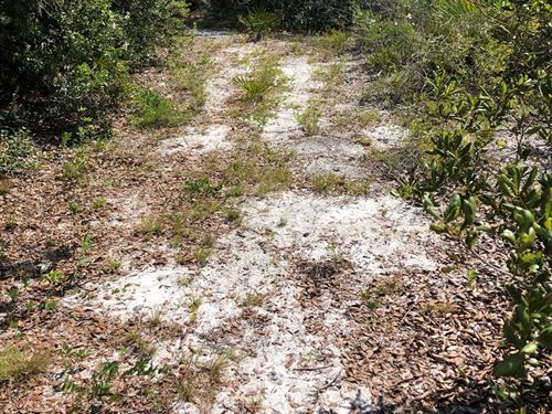 1.16 Acres Lake Wales Estates : Lake Wales : Polk County : Florida