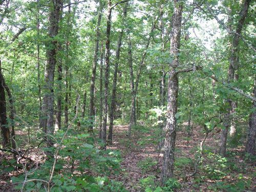 46 Acres M/L Hunting Land, Cabin : Osceola : Saint Clair County : Missouri