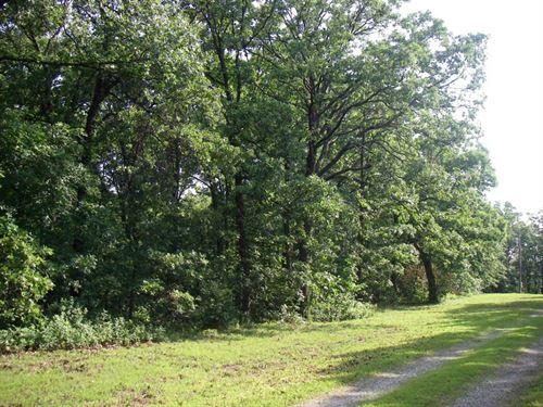 Fantastic Building Site 8.7 Acres : Osceola : Saint Clair County : Missouri