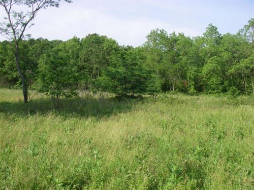 83 Acres Excellent Hunting Land : Osceola : Saint Clair County : Missouri
